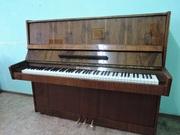 Прокат (аренда) пианино,  фортепиано