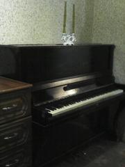Продам пианино недорого